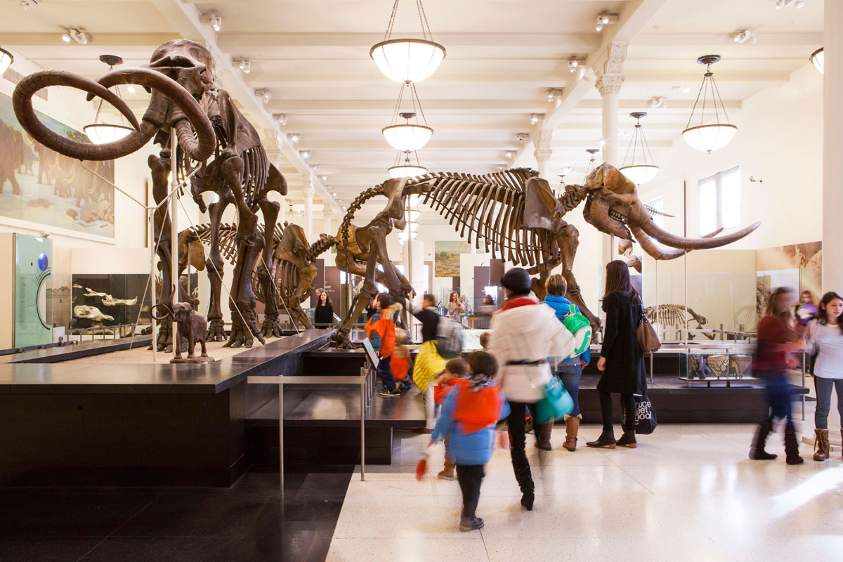 American Museum Of Natural History (Foto: NYCGo/Marley White)